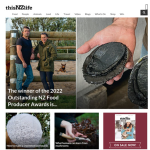 thisnzlife.co.nz