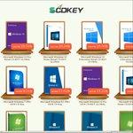 Scdkeys Cuts 5% off for all products of Microsoft Windows CD Keys @SCDKey