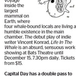 Win a Double Pass to Life In The Whale from The Dominion Post (Wellington)