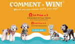 Win 1 of 3 Dog Hawaiian Shirts for Dog Beach Adventures from Palm Paw