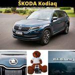 Win a 2m Tall ŠKODA New Zealand Teddy Bear, 1 of 5 ŠKODA Model Cars or 1 of 5 LED Torches from AA New Zealand