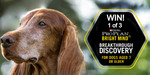 Win 1 of 3 PRO PLAN BRIGHT MIND Dog Food Prizes (Worth up to $145) from Grownups