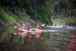 5% or 10% off Selected New Zealand Tours @ Stray Travel