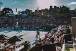 Win Six Tickets to a Courtside Box at The ASB Classic from VIVA