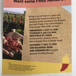 [Auckland] Free Nandos Chicken for Gold Coin Donation / Food Can