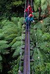 [Rotorua] 20% off Tours @ Rotorua Canopy Tours