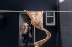 Win an Eco-Printed Silk Scarf (worth $105) from Perpetua Studio @ This NZ Life